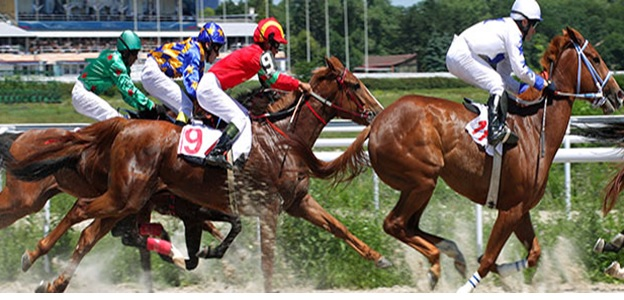Best horse race betting system max bet soccer betting tips